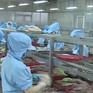 Ngành thủy sản: Xuất khẩu ít - Giá trị nhiều