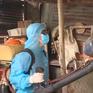 Nguy cơ bùng phát bệnh sốt xuất huyết từ các bãi phế liệu