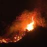 Cháy rừng tại Đà Nẵng, hàng trăm người dập lửa trong đêm