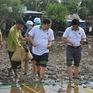 Phát động phong trào trồng rừng ngập mặn và bảo vệ bãi ven biển ở ĐBSCL