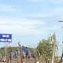 Phát động trồng rừng ngập mặn và bảo vệ bãi ven biển ĐBSCL