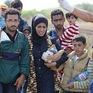 Số người di cư trên toàn thế giới ngày càng tăng