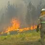 Bồ Đào Nha huy động hơn 1.000 lính cứu hỏa đối phó với cháy rừng