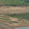 Hàng chục ngàn ha lúa ở Trung Bộ có nguy cơ thiếu nước
