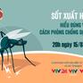 GLTT: Hiểu đúng về sốt xuất huyết và cách phòng chống dịch hiệu quả
