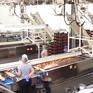 Công nghệ bảo quản táo hiện đại của Ba Lan