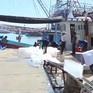 Ngư dân tàu đánh bắt xa bờ nhộn nhịp chuẩn ra khơi