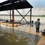 Báo động nguy cơ lũ lụt nghiêm trọng tại New Delhi, Ấn Độ