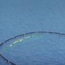 """Triển khai lưới """"bắt"""" rác nhựa trên đại dương"""