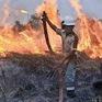 Indonesia huy động máy bay trực thăng đối phó cháy rừng
