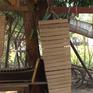 Nghề chế tác đàn thuyền truyền thống tại Lào