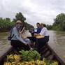 Chuyến đi màu xanh: Về Cà Mau trải nghiệm trồng chuối ép khô