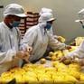 Yêu cầu truy xuất nguồn gốc đối với trái cây xuất sang Trung Quốc