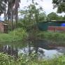 Trại lợn xả thải lộ thiên giữa khu dân cư: Chính quyền vẫn chờ hướng dẫn luật