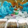 Xuất khẩu tôm vào các thị trường tăng mạnh