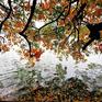 Bắc Bộ sắp đón không khí lạnh đầu mùa