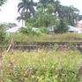 Lãnh đạo thôn tại Hưng Yên bán đất nghĩa trang: UBND huyện lên tiếng xác nhận