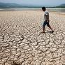 Ứng phó với biến đổi khí hậu: Cần hành động ngay để cứu lấy Trái đất!