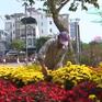 Hoa Tết dập dìu ra phố phường ở Cần Thơ