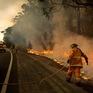 Australia đóng cửa sân bay ở Canberra do cháy rừng