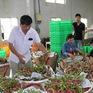 EVFTA thêm cơ hội cho xuất khẩu nông sản