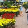 Cần Thơ: Súc mua hoa kiểng, trái cây giảm trong ngày cuối năm