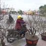 Mùng 2 Tết Canh Tý 2020, miền Bắc hết mưa giông