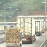 Hơn 1.000 tấn nông sản Việt trong chuyến xuất khẩu đầu năm