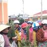 Đầu năm đi chợ mở Ngọ cầu may ở Nam Trung Bộ