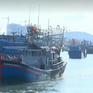 Phối hợp với ngư dân, địa phương thực hiện lộ trình xây dựng nghề cá bền vững