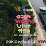 VTV Đặc biệt tháng 11: Đoạn trường vinh hoa