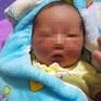 Bé gái sơ sinh bị bỏ rơi giữa cánh đồng
