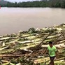 Bão Molave gây thiệt hại nặng nề ở Philippines trước khi đổ bộ Việt Nam