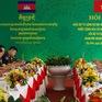 Việt Nam - Campuchia hợp tác chặt chẽ trong phòng chống COVID-19 và quản lý, bảo vệ biên giới