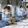 Đà phục hồi của kinh tế toàn cầu gặp rủi ro do số ca mắc COVID-19 gia tăng