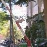 TP.HCM: Gỡ bỏ phong toả khu dân cư ở quận Gò Vấp