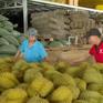 Dịch viêm đường hô hấp cấp COVID-19: Cơ hội cho nông sản Việt