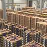 Logistics nông sản nhìn từ kinh nghiệm của Hà Lan