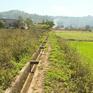 Giải pháp ứng phó với hạn hán hiệu quả tại Đắk Nông