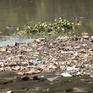 TP.HCM: Xuất hiện nhiều điểm đen rác thải