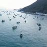 Việt Nam - Điểm đến an toàn của du khách trong dịch COVID-19