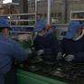 Trung Quốc triển khai hàng loạt các biện pháp hỗ trợ kinh tế