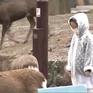 Lượng du khách tại Nhật Bản giảm mạnh do ảnh hưởng từ dịch COVID-19