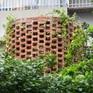 Nhà ống chật hẹp ở Hà Nội đẹp ấn tượng nhờ các khu vườn treo xanh mát