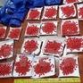 Đối tượng 17 tuổi tham gia vận chuyển gần 7.000 viên ma túy tổng hợp từ Lào về Việt Nam