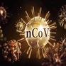 Ứng phó với dịch COVID-19 tại đô thị