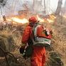 Cháy rừng tại Trung Quốc, 19 người thiệt mạng