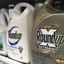 Bayer đạt thỏa thuận bồi thường liên quan đến thuốc diệt cỏ của Monsanto