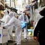 Thủ đô Seoul (Hàn Quốc) và vùng phụ cận trước nguy cơ bùng phát mới dịch COVID-19