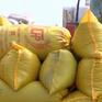 Trồng lúa an toàn, hiệu quả và bền vững với chuỗi liên kết lúa gạo